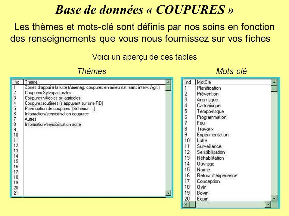 Base de données « COUPURES » Les thèmes et mots-clé sont définis par nos soins en fonction des renseignements que vous nous fournissez sur vos fiches Voici un aperçu de ces tables ThèmesMots-clé