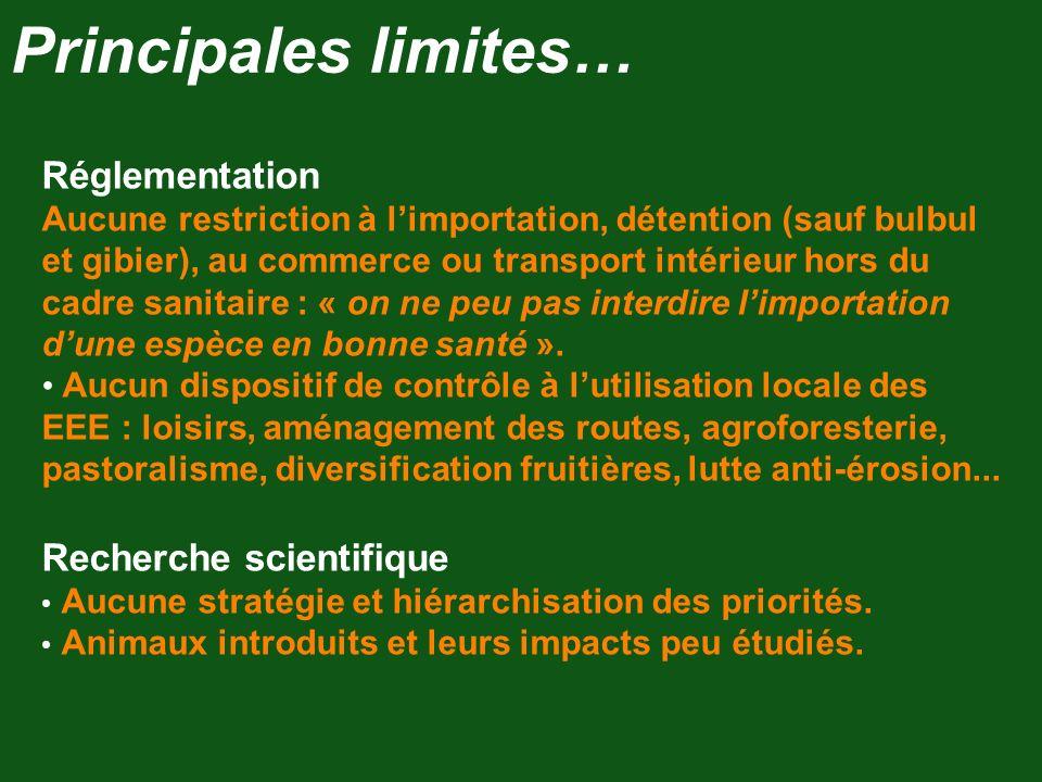 Réglementation Aucune restriction à limportation, détention (sauf bulbul et gibier), au commerce ou transport intérieur hors du cadre sanitaire : « on