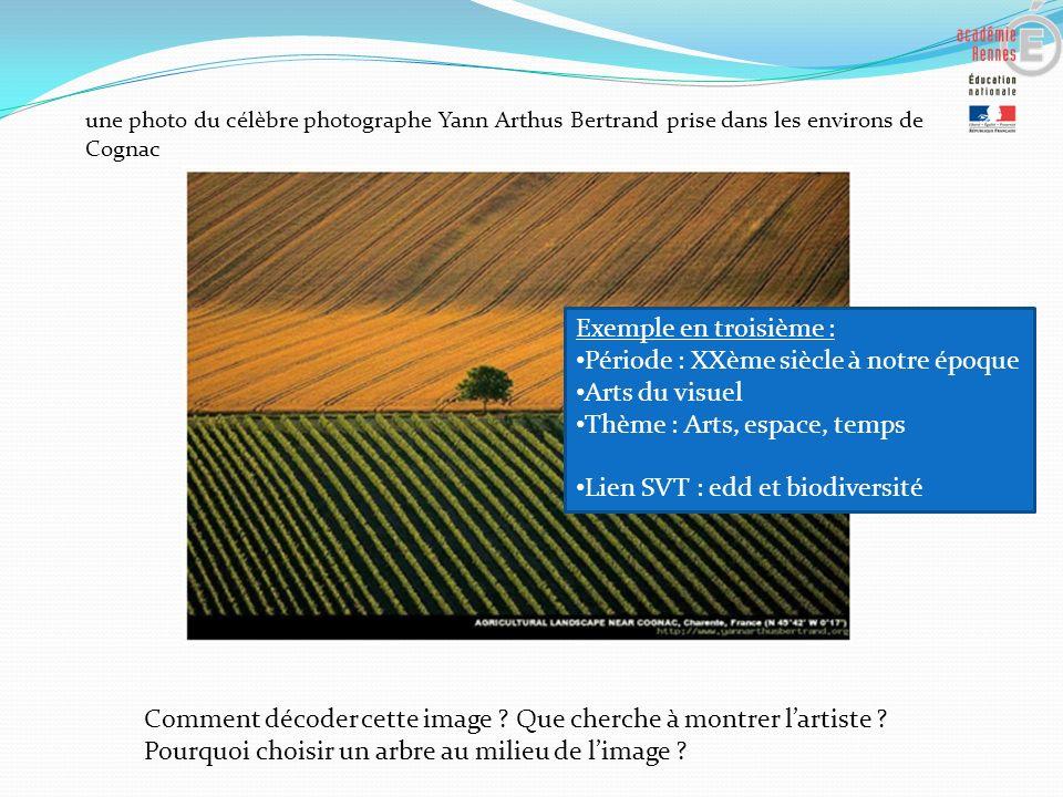 une photo du célèbre photographe Yann Arthus Bertrand prise dans les environs de Cognac Comment décoder cette image ? Que cherche à montrer lartiste ?
