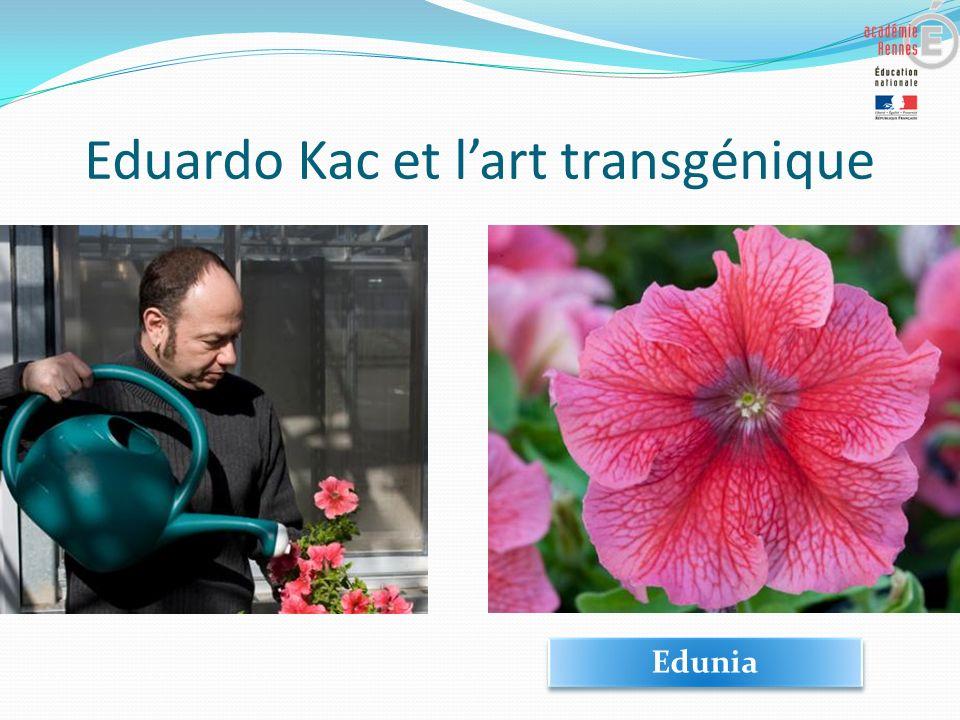 Eduardo Kac et lart transgénique Edunia