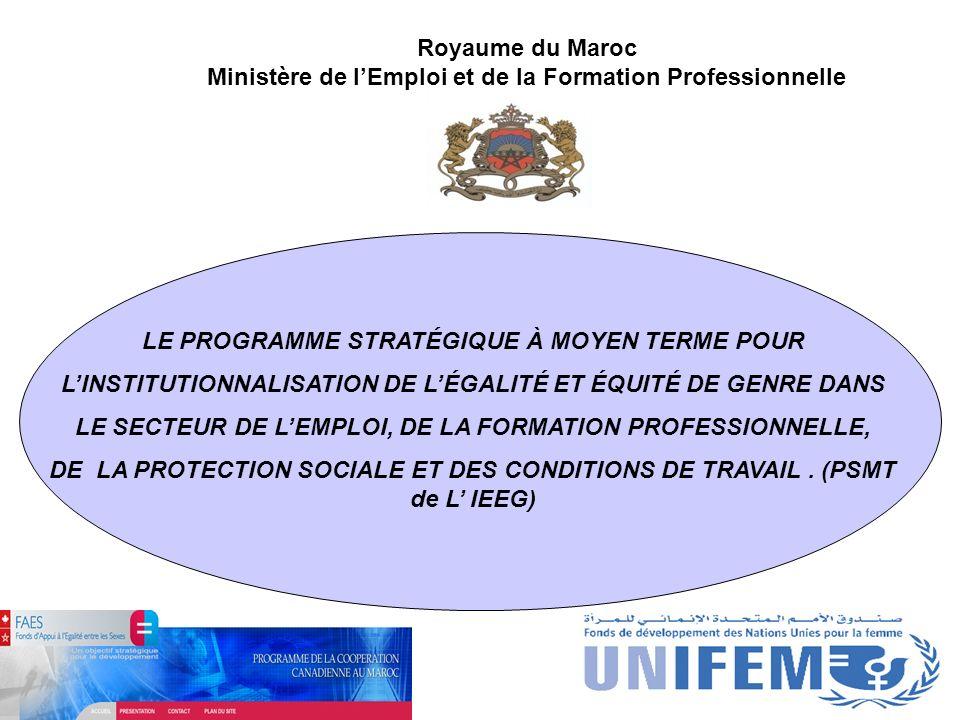 Royaume du Maroc Ministère de lEmploi et de la Formation Professionnelle LE PROGRAMME STRATÉGIQUE À MOYEN TERME POUR LINSTITUTIONNALISATION DE LÉGALIT