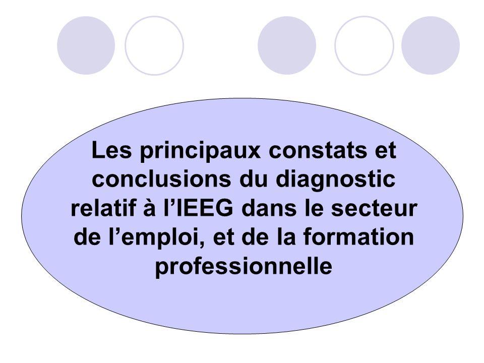 Les principaux constats et conclusions du diagnostic relatif à lIEEG dans le secteur de lemploi, et de la formation professionnelle
