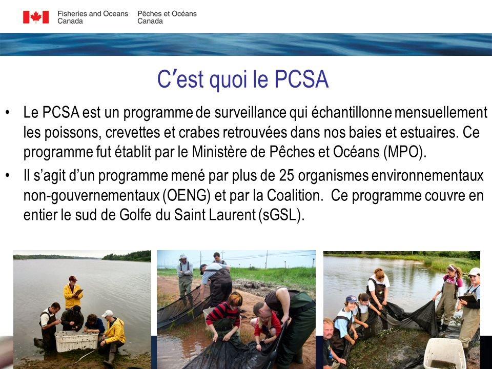 Le programme a débuté en 2003 comme projet pilote et en 2004 à titre dinitiative dintendance environnementale: 1) Fournir un programme de relations communautaires afin que le MPO puisse interagir avec les OENGs pour sensibiliser les gens à lécologie des estuaires et baies du sGSL.