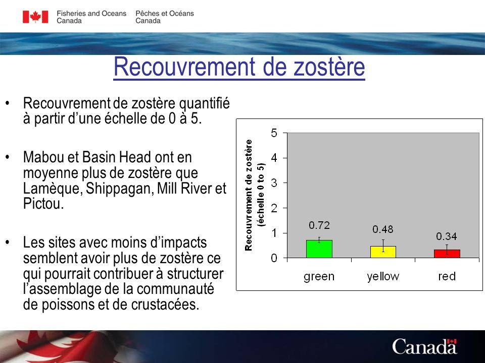 Recouvrement de zostère Recouvrement de zostère quantifié à partir dune échelle de 0 à 5.