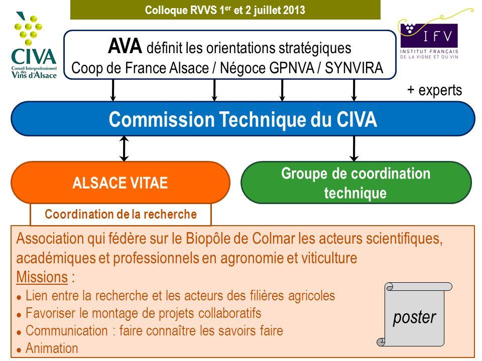 Colloque RVVS 1 er et 2 juillet 2013 + experts AVA définit les orientations stratégiques Coop de France Alsace / Négoce GPNVA / SYNVIRA Coordination d