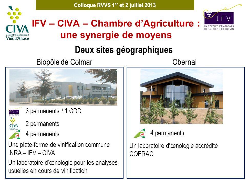 Colloque RVVS 1 er et 2 juillet 2013 IFV – CIVA – Chambre dAgriculture : une synergie de moyens Deux sites géographiques 3 permanents / 1 CDD 2 perman