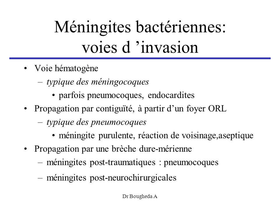 Méningites bactériennes: voies d invasion Voie hématogène –typique des méningocoques parfois pneumocoques, endocardites Propagation par contiguïté, à partir dun foyer ORL –typique des pneumocoques méningite purulente, réaction de voisinage,aseptique Propagation par une brèche dure-mérienne –méningites post-traumatiques : pneumocoques –méningites post-neurochirurgicales Dr Bougheda A