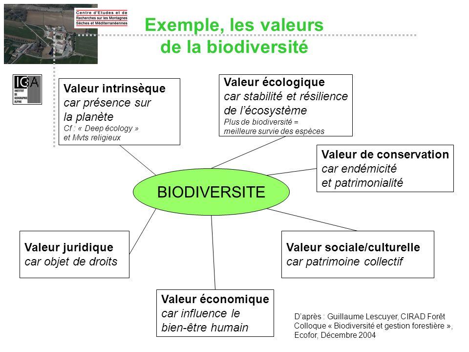 BIODIVERSITE Daprès : Guillaume Lescuyer, CIRAD Forêt Colloque « Biodiversité et gestion forestière », Ecofor, Décembre 2004 Valeur intrinsèque car pr