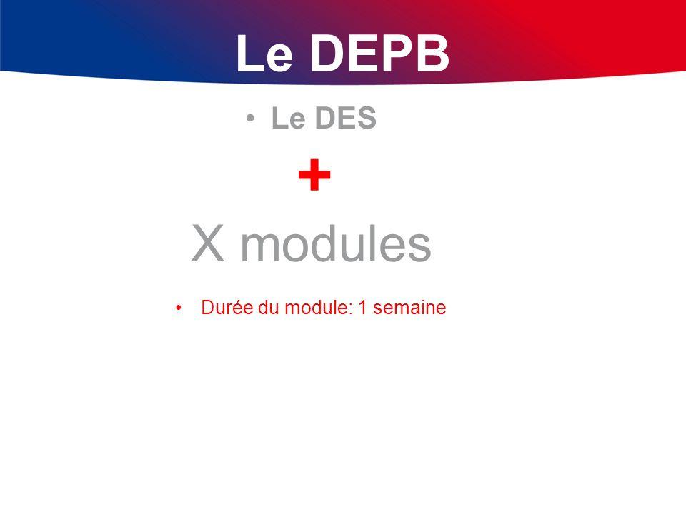 Le DEPB Le DES + X modules Durée du module: 1 semaine