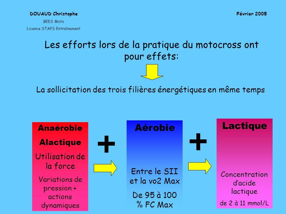 DOUAUD Christophe BEES Moto Licence STAPS Entraînement Février 2005 Lactique Concentration dacide lactique de 2 à 11 mmol/L Anaérobie Alactique Utilis