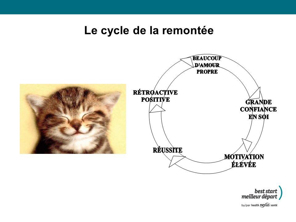 Le cycle de la remontée