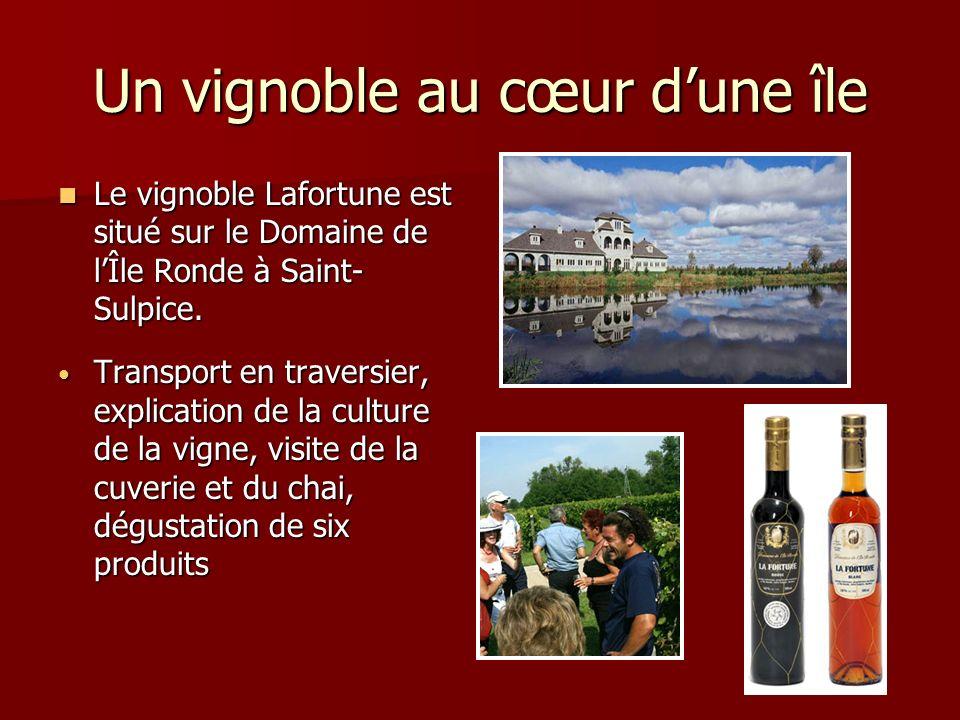 Un vignoble au cœur dune île Le vignoble Lafortune est situé sur le Domaine de lÎle Ronde à Saint- Sulpice. Le vignoble Lafortune est situé sur le Dom