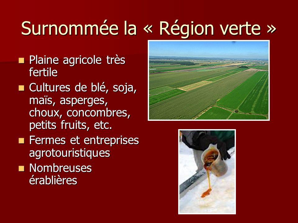 Surnommée la « Région verte » Plaine agricole très fertile Plaine agricole très fertile Cultures de blé, soja, maïs, asperges, choux, concombres, peti