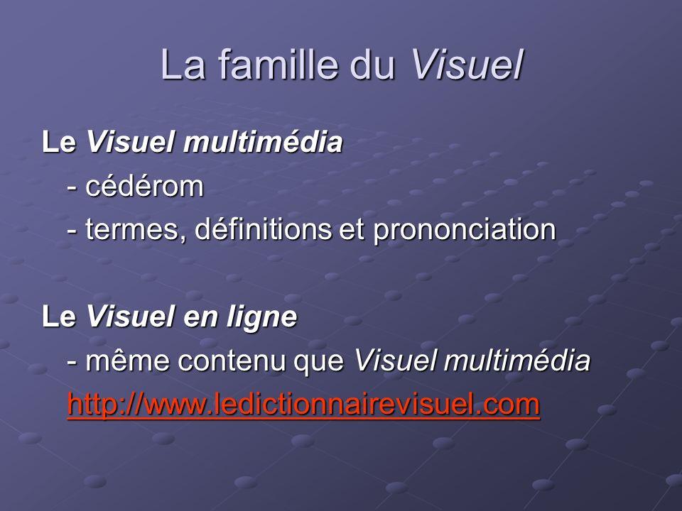 La famille du Visuel Le Visuel multimédia - cédérom - termes, définitions et prononciation Le Visuel en ligne - même contenu que Visuel multimédia http://www.ledictionnairevisuel.com