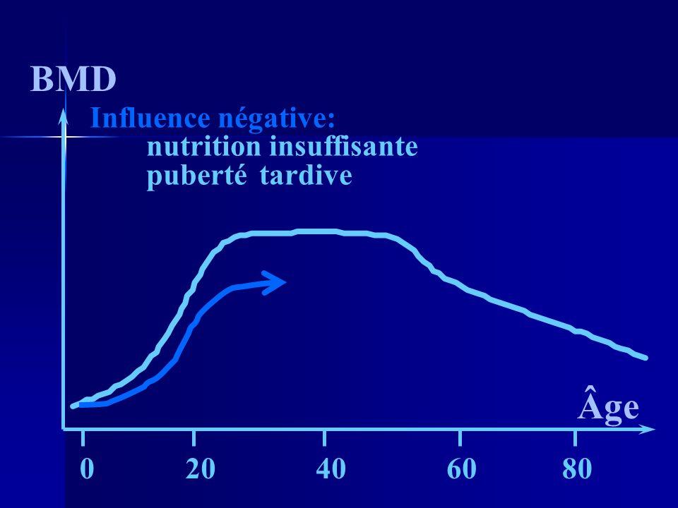BMD Âge 20406080 0 Influence négative: nutrition insuffisante pubertétardive