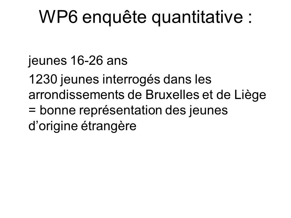 WP6 enquête quantitative : jeunes 16-26 ans 1230 jeunes interrogés dans les arrondissements de Bruxelles et de Liège = bonne représentation des jeunes dorigine étrangère
