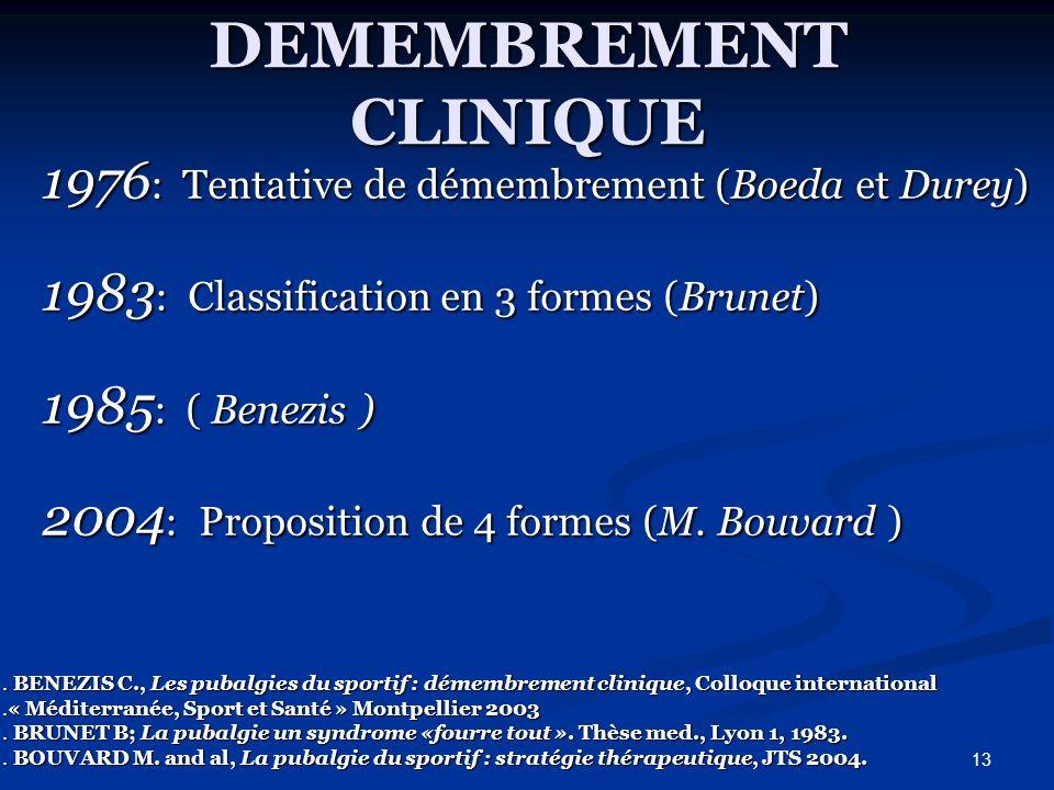 13 DEMEMBREMENT CLINIQUE 1976 : Tentative de démembrement (Boeda et Durey) 1976 : Tentative de démembrement (Boeda et Durey) 1983 : Classification en