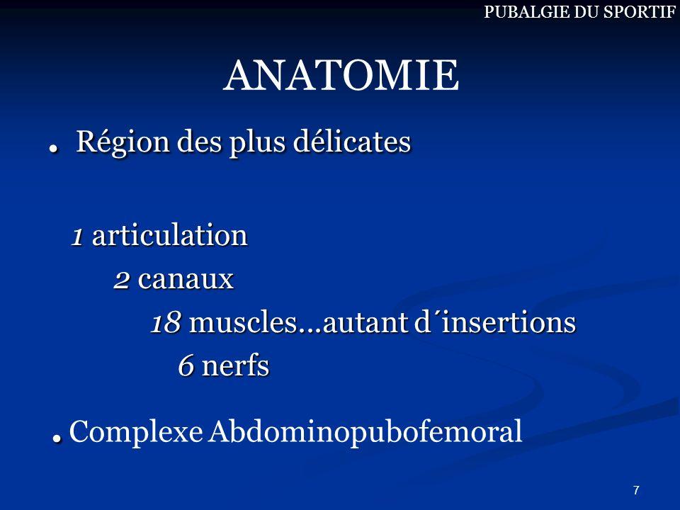 7. Région des plus délicates 1 articulation 2 canaux 2 canaux 18 muscles...autant d´insertions 18 muscles...autant d´insertions 6 nerfs 6 nerfs ANATOM