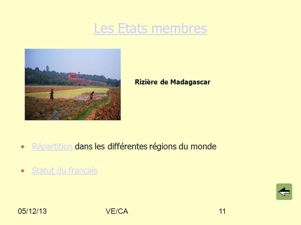 05/12/13VE/CA11 Les Etats membres Répartition dans les différentes régions du mondeRépartition Statut du français Rizière de Madagascar