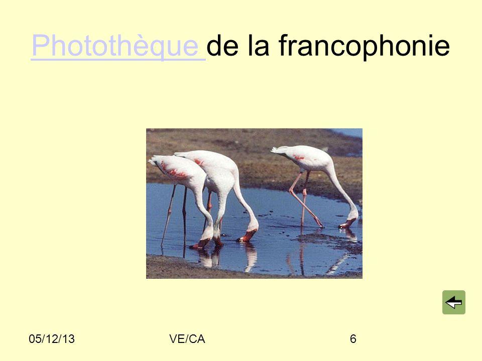 05/12/13VE/CA6 Photothèque Photothèque de la francophonie