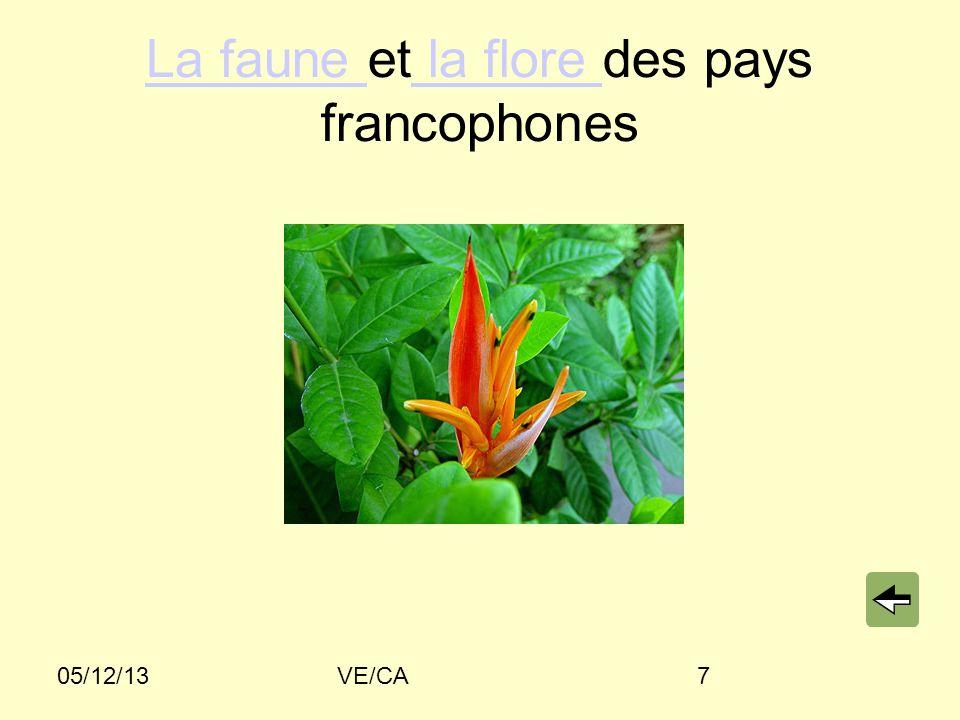 05/12/13VE/CA7 La faune La faune et la flore des pays francophones la flore