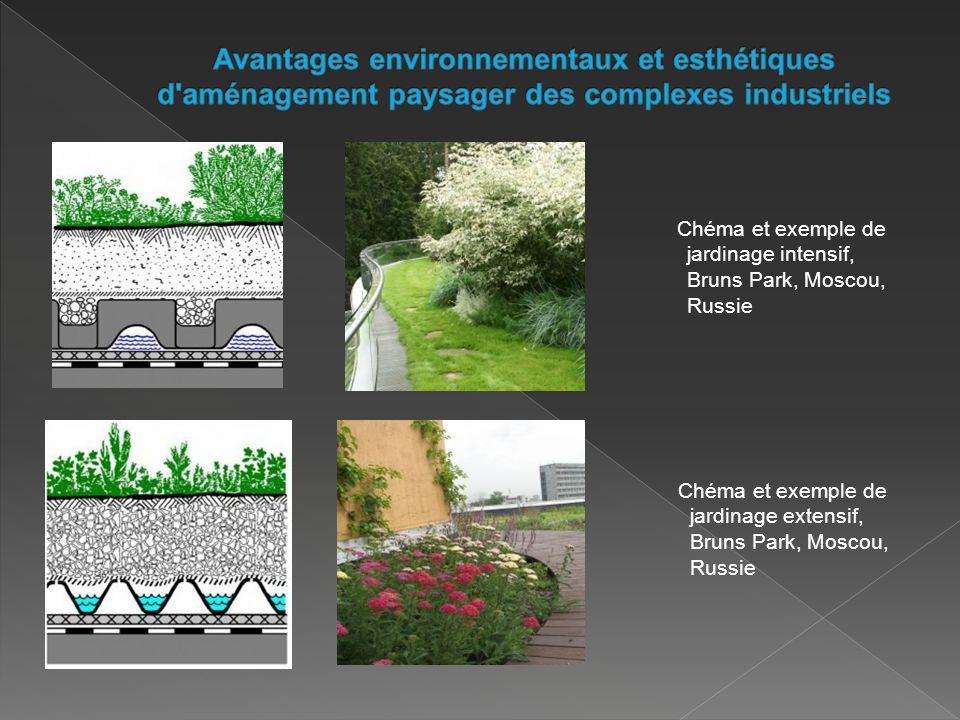 Chéma et exemple de jardinage intensif, Bruns Park, Moscou, Russie Chéma et exemple de jardinage extensif, Bruns Park, Moscou, Russie