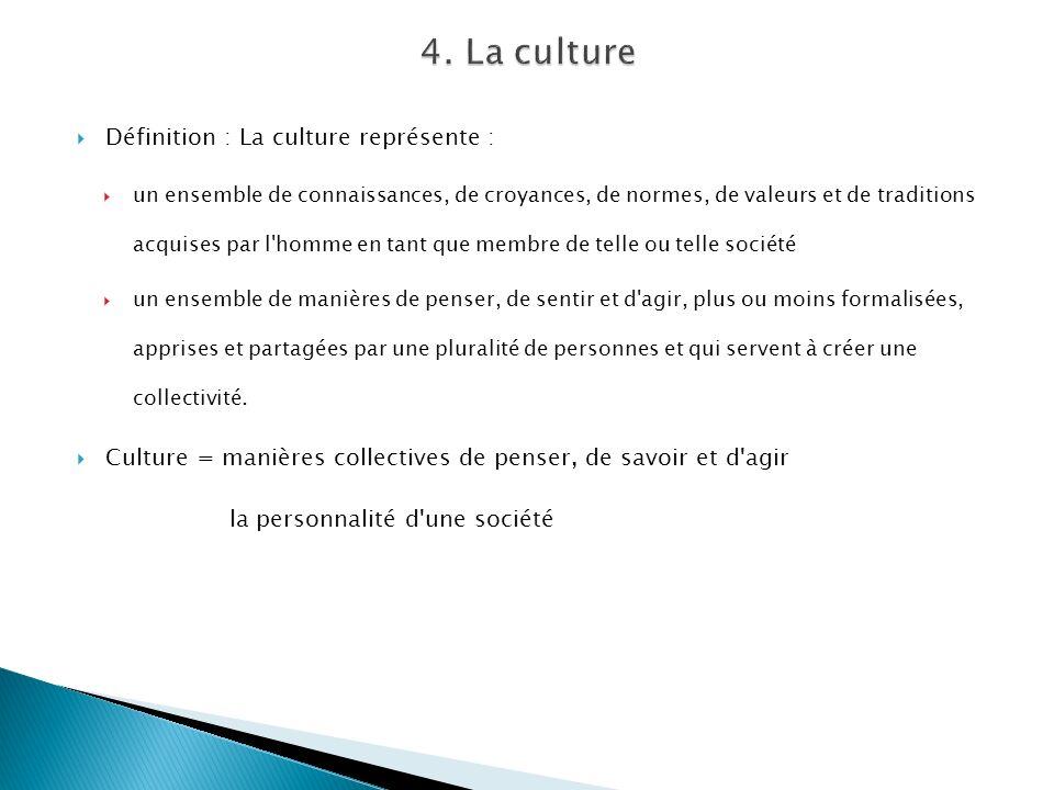 Définition : La culture représente : un ensemble de connaissances, de croyances, de normes, de valeurs et de traditions acquises par l'homme en tant q