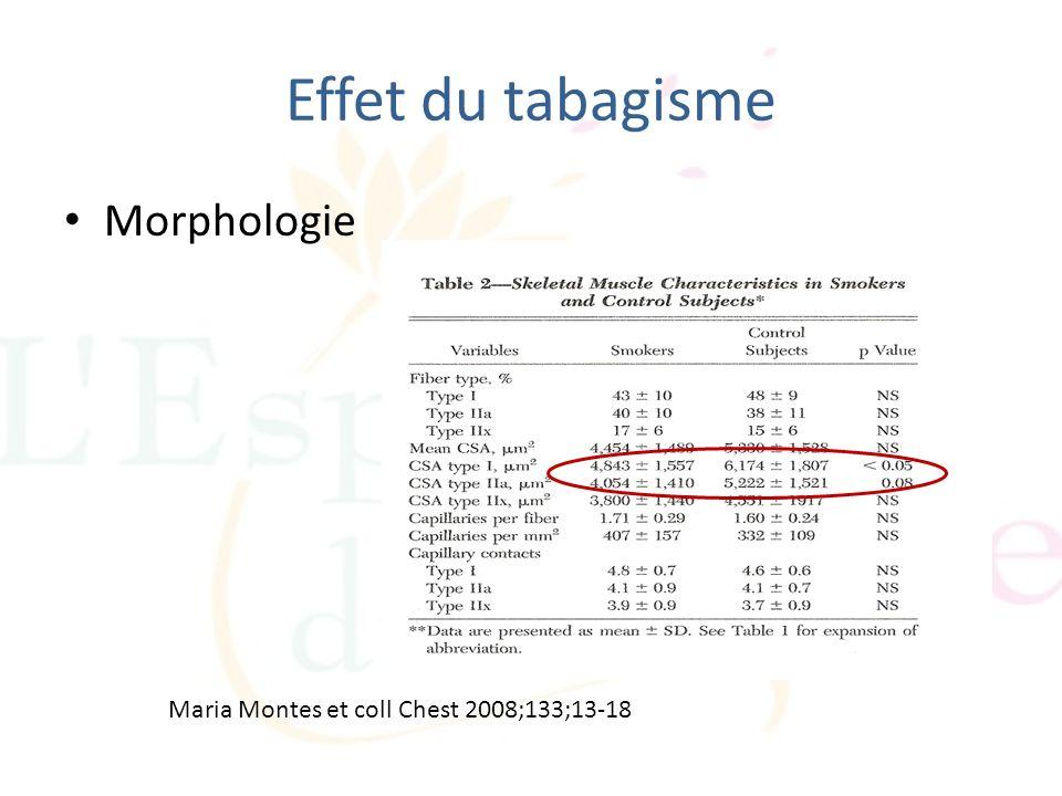 Effet du tabagisme Maria Montes et coll Chest 2008;133;13-18 Morphologie