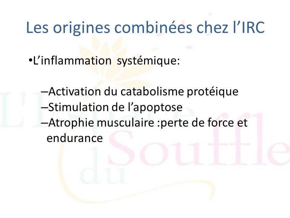 Les origines combinées chez lIRC Linflammation systémique: – Activation du catabolisme protéique – Stimulation de lapoptose – Atrophie musculaire :per