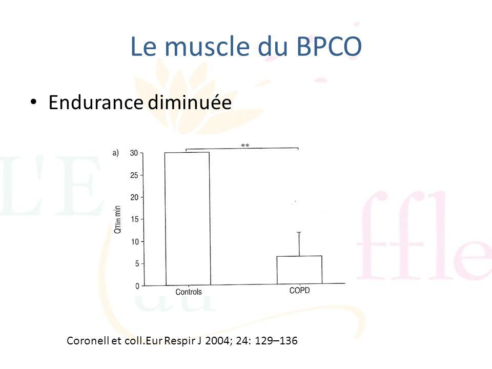 Endurance diminuée Le muscle du BPCO Coronell et coll.Eur Respir J 2004; 24: 129–136