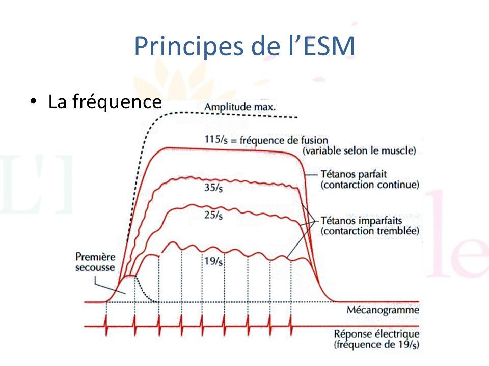 Principes de lESM La fréquence