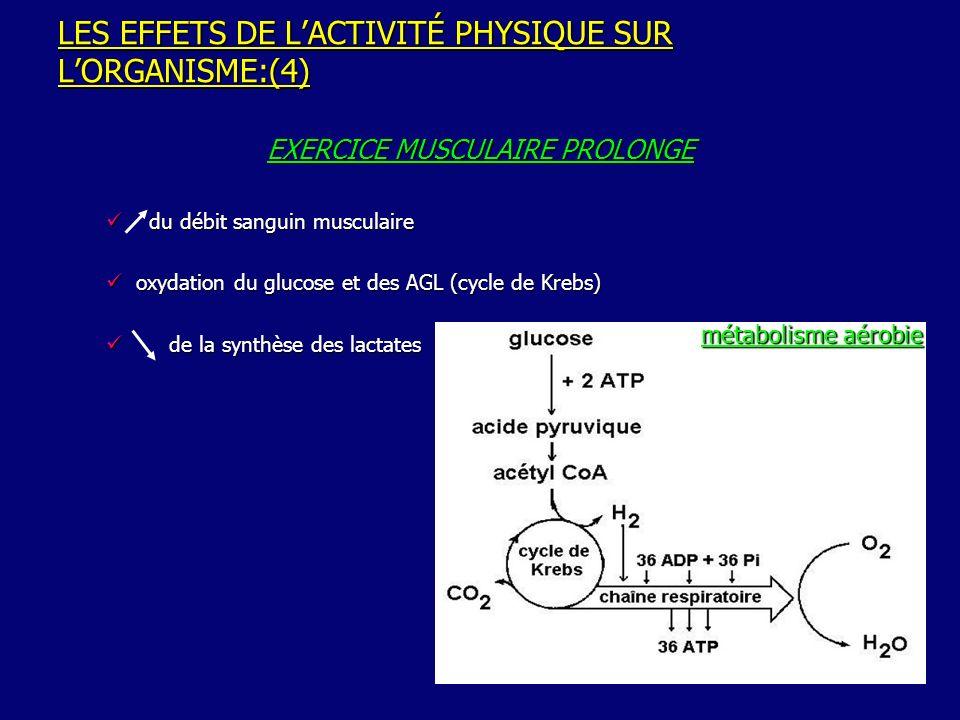 LES EFFETS DE LACTIVITÉ PHYSIQUE SUR LORGANISME:(5) Processus énergétique aérobie:rendement bcp plus important que le processus anaérobie:36 vs 2 molécules dATP / 1 molécule de glucose Processus énergétique aérobie:rendement bcp plus important que le processus anaérobie:36 vs 2 molécules dATP / 1 molécule de glucose Laugmentation de la captation musculaire de glucose pendant lexercice(amélioration de linsulinosensibilité) persiste +eurs heures après larrêt de lAc Phys permettant ainsi la reconstitution des stocks de glycogène Laugmentation de la captation musculaire de glucose pendant lexercice(amélioration de linsulinosensibilité) persiste +eurs heures après larrêt de lAc Phys permettant ainsi la reconstitution des stocks de glycogène