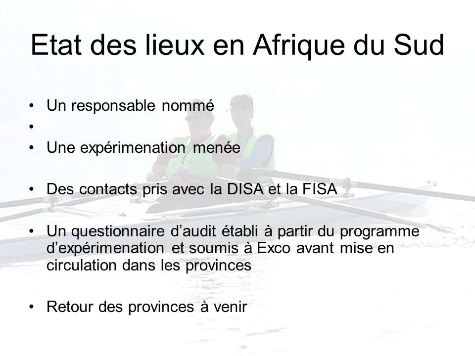 Etat des lieux en Afrique du Sud Un responsable nommé Une expérimenation menée Des contacts pris avec la DISA et la FISA Un questionnaire daudit établ