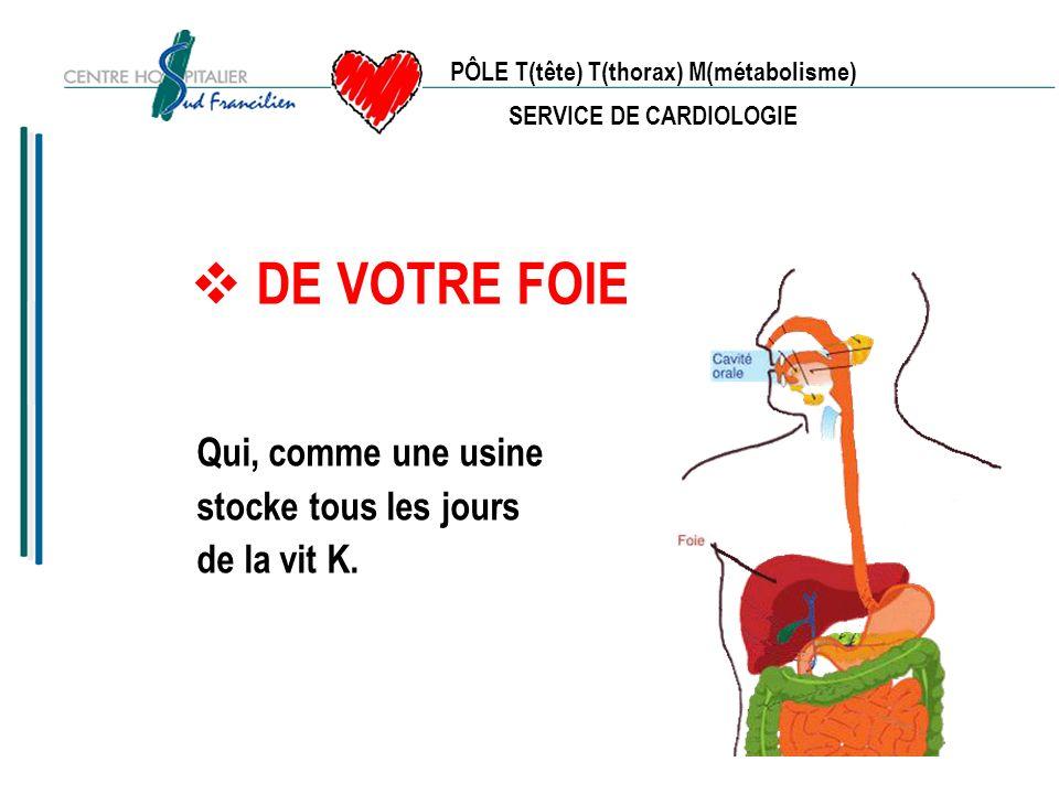 PÔLE T(tête) T(thorax) M(métabolisme) SERVICE DE CARDIOLOGIE - Cest une vitamine qui est utilisée par le foie pour la formation des facteurs de coagulation.
