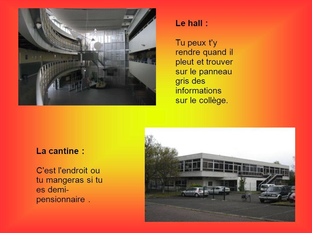 Le hall : Tu peux t'y rendre quand il pleut et trouver sur le panneau gris des informations sur le collège. La cantine : C'est l'endroit ou tu mangera