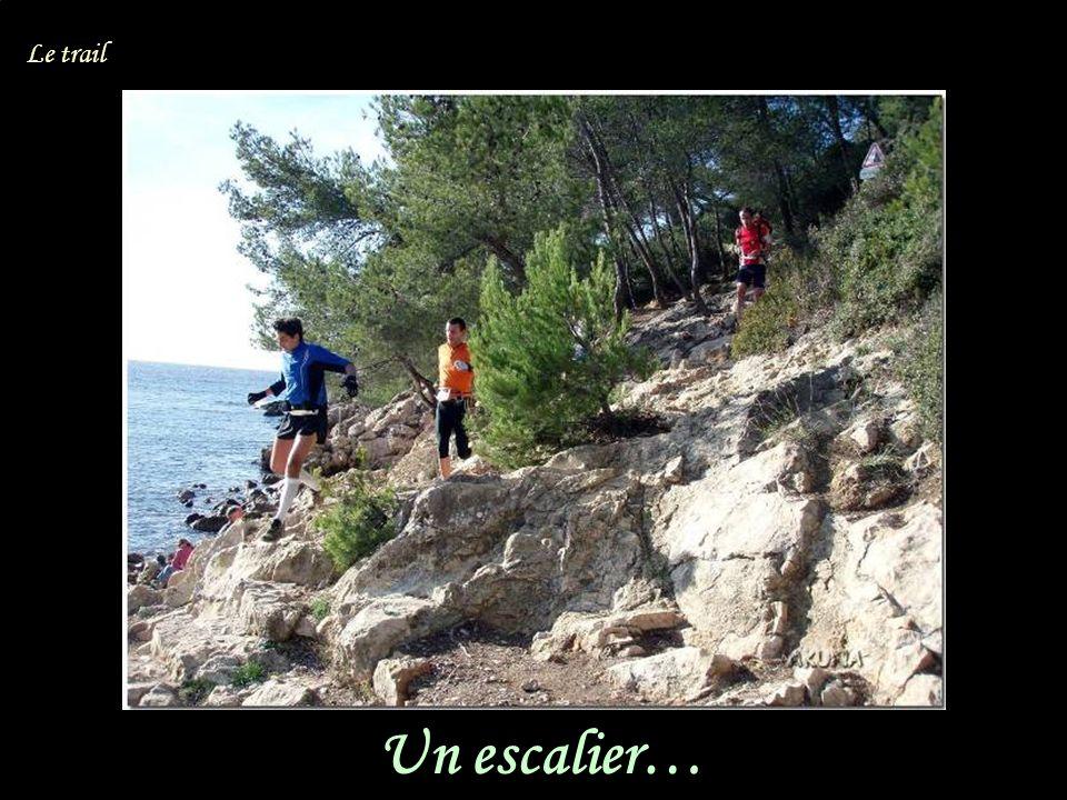 Un escalier… Le trail