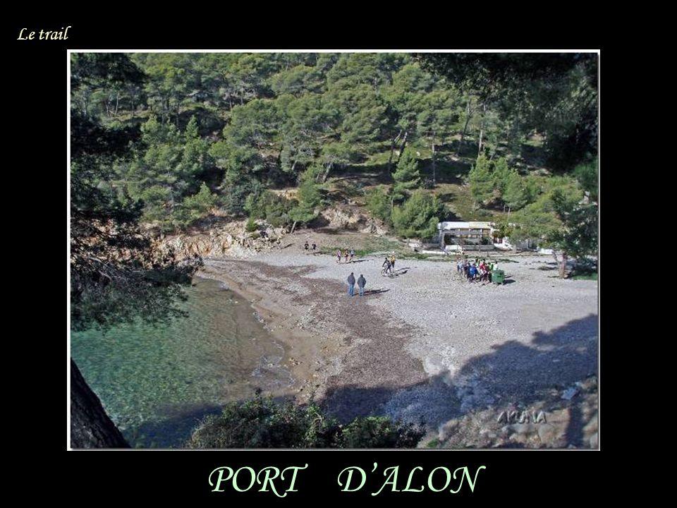 PORT DALON