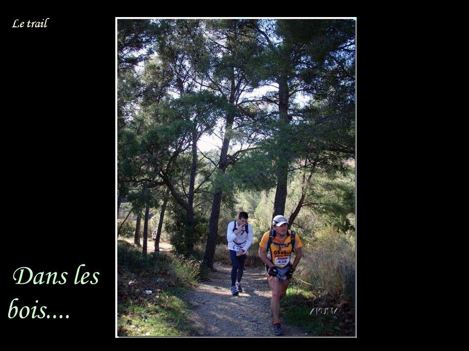 2 hommes heureux.. Dans les bois.... Le trail
