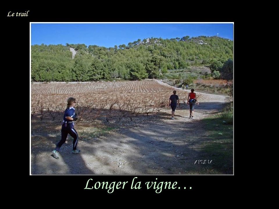 Longer la vigne… Le trail