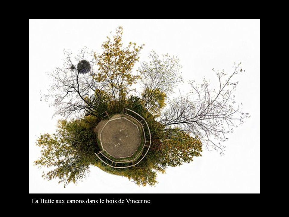 La Butte aux canons dans le bois de Vincenne