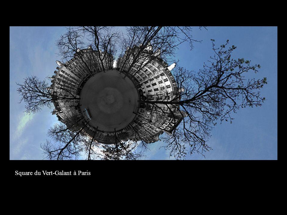Square du Vert-Galant à Paris