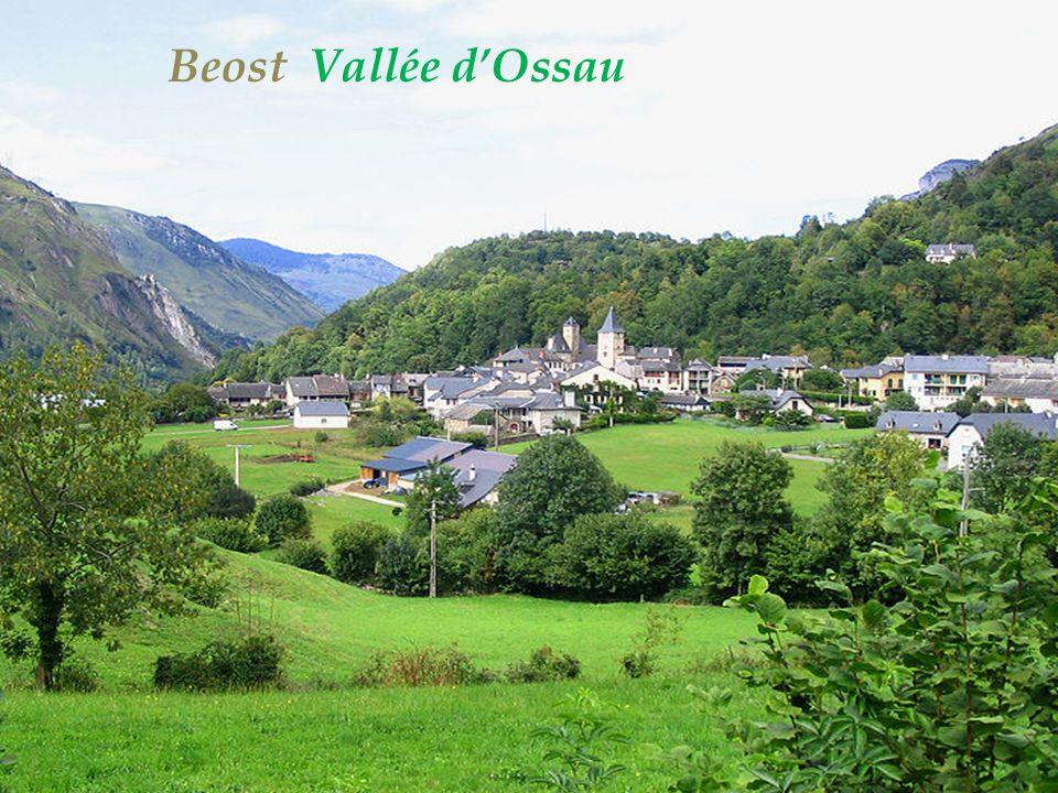Aas le village Vallée dOssau