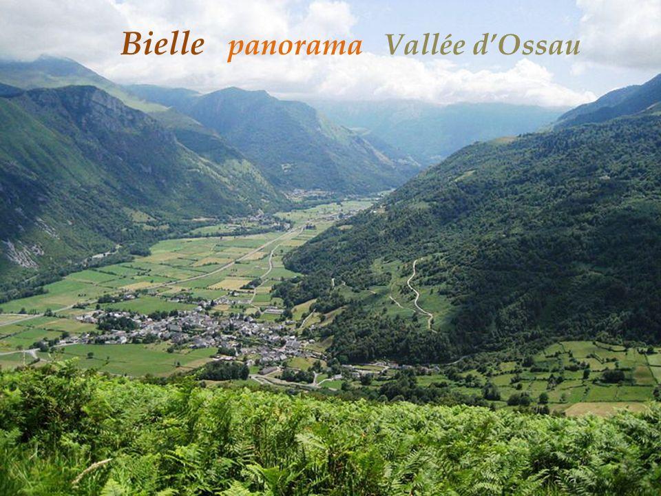 Beost Vallée dOssau