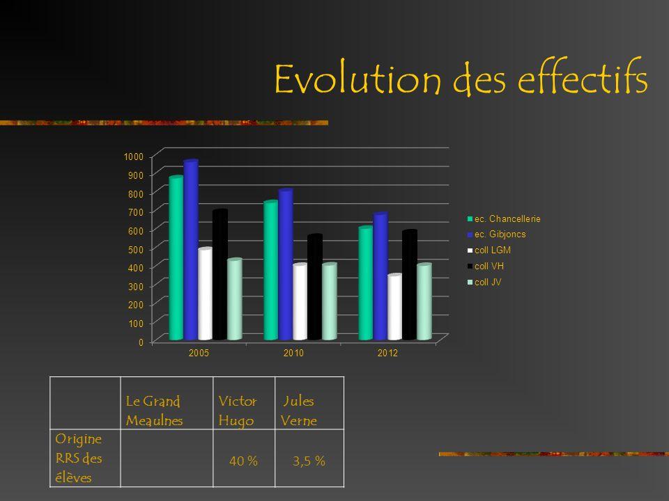 Evolution des effectifs Le Grand Meaulnes Victor Hugo Jules Verne Origine RRS des élèves 40 %3,5 %