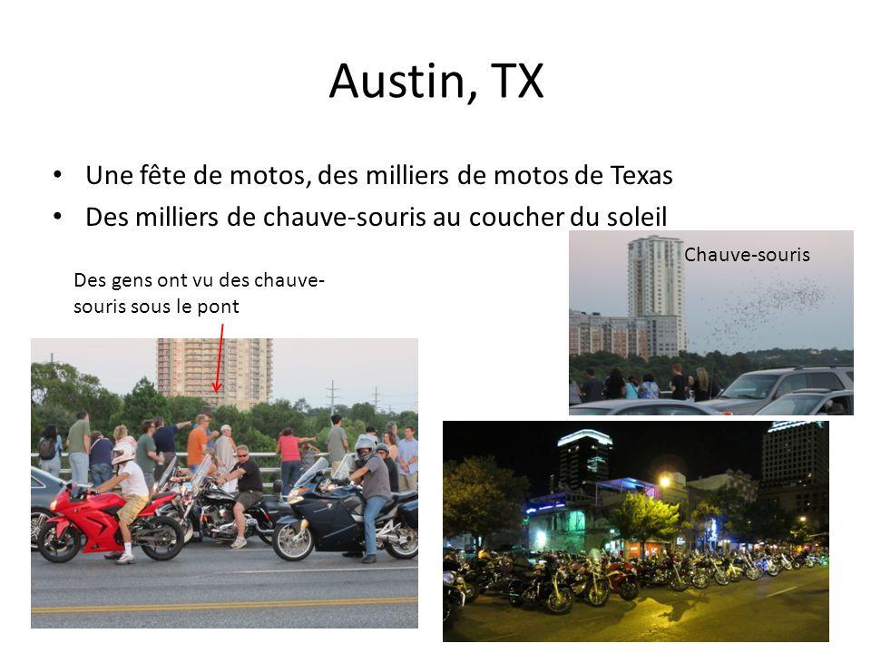 Austin, TX Une fête de motos, des milliers de motos de Texas Des milliers de chauve-souris au coucher du soleil Des gens ont vu des chauve- souris sous le pont Chauve-souris