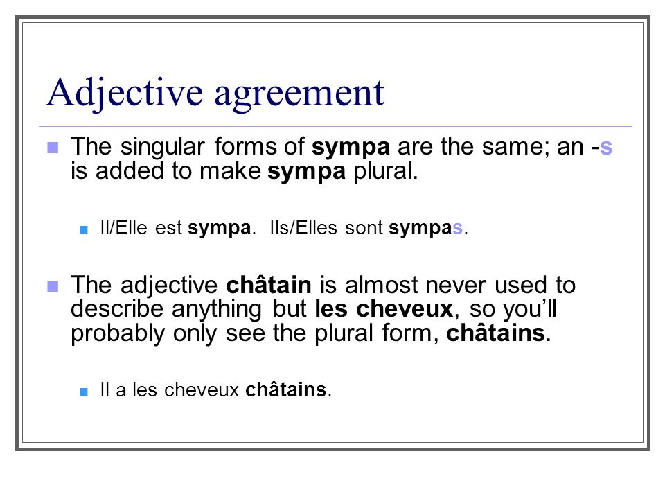 Adjective agreement Some adjectives dont change in the feminine or plural.