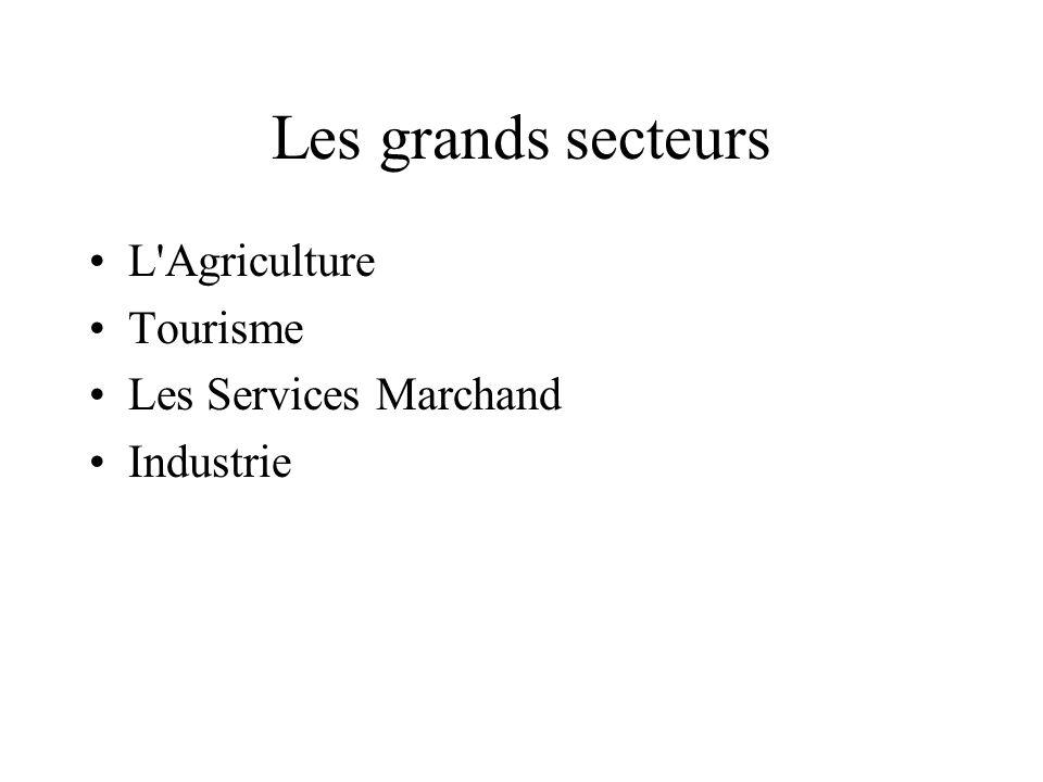 Les grands secteurs L'Agriculture Tourisme Les Services Marchand Industrie