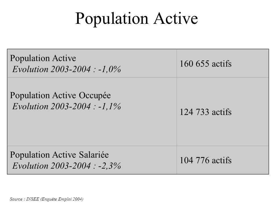 Population Active Population Active Evolution 2003-2004 : -1,0% 160 655 actifs Population Active Occupée Evolution 2003-2004 : -1,1% 124 733 actifs Po