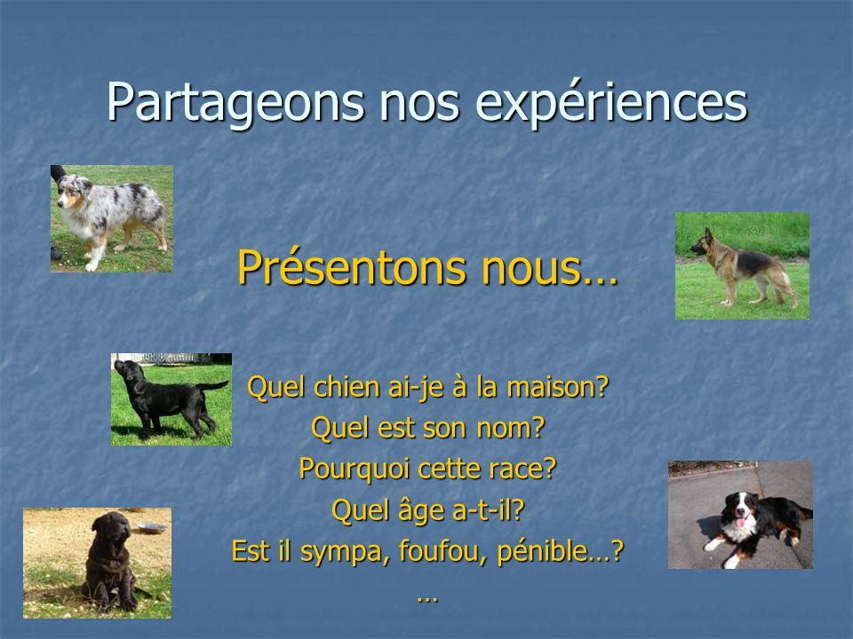 Partageons nos expériences Présentons nous… Quel chien ai-je à la maison? Quel est son nom? Pourquoi cette race? Quel âge a-t-il? Est il sympa, foufou