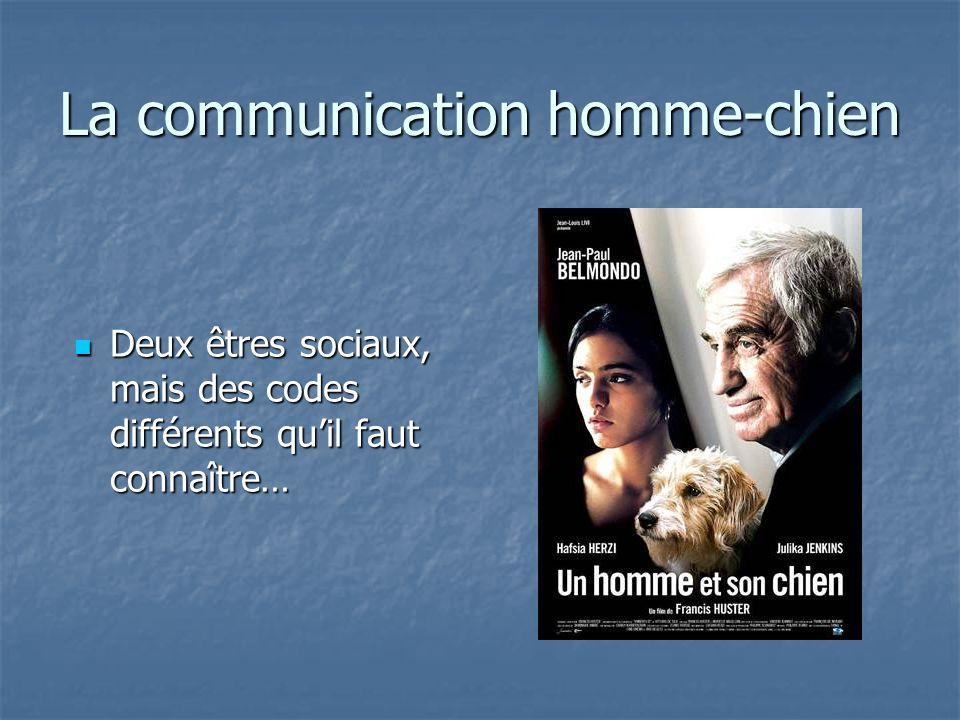 La communication homme-chien Deux êtres sociaux, mais des codes différents quil faut connaître… Deux êtres sociaux, mais des codes différents quil fau